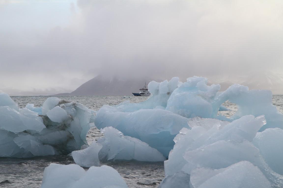 Góry lodowe w fiordzie