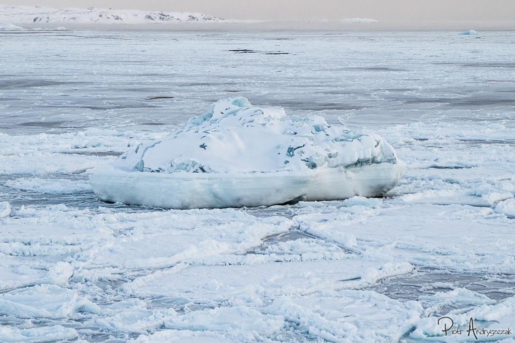 Fiord skuty lodem