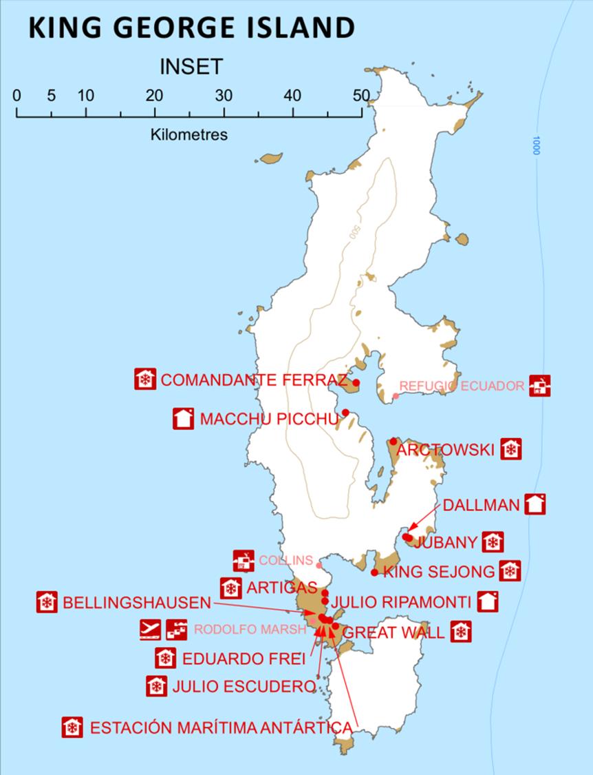 Nasi sąsiedzi na Wyspie Króla Jerzego, źródło: Wikipedia