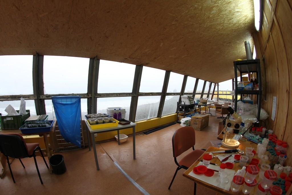 Widok na Zatokę Admiralicji