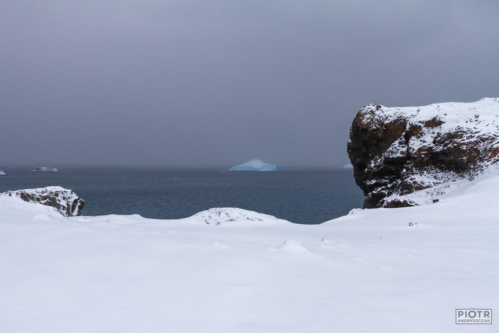 Samotna góra lodowa w Cieśninie Bransfielda