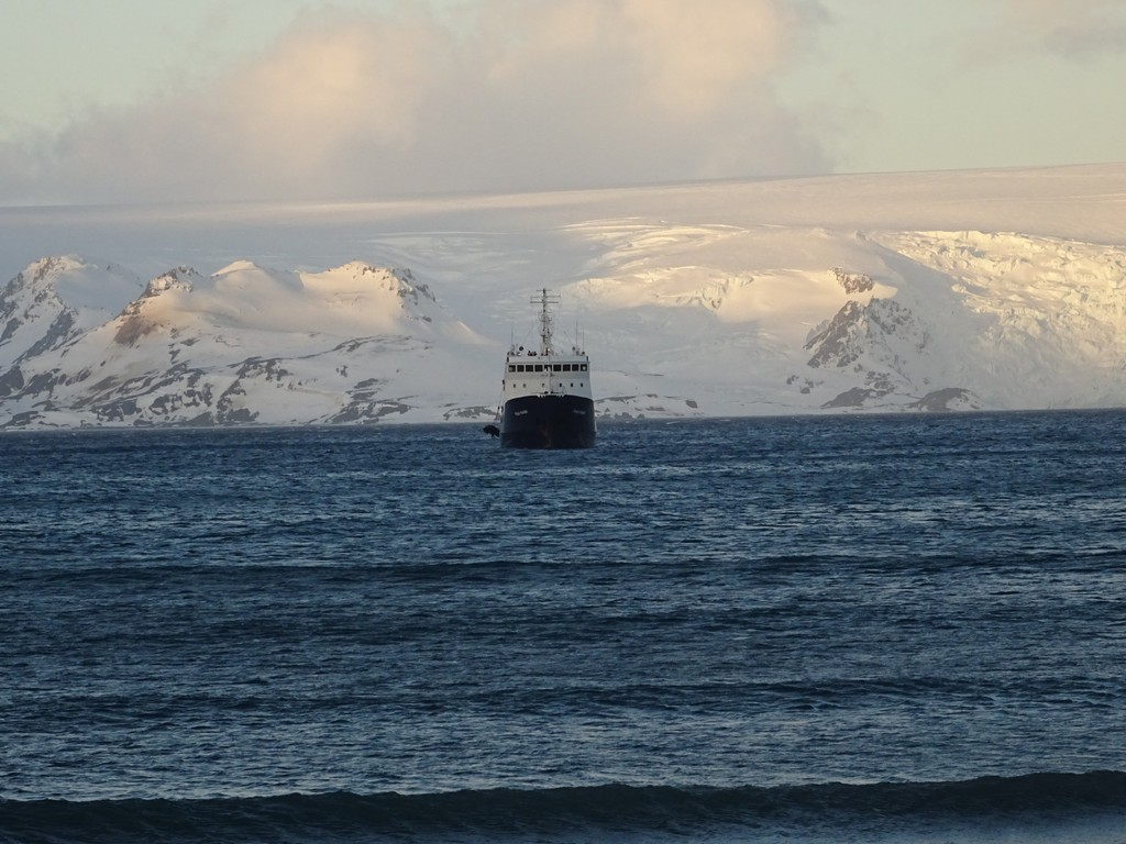 Polar Pioneer w Zatoce